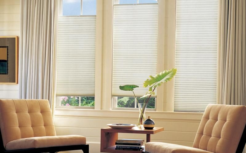 Cellular Shades in the Living Room